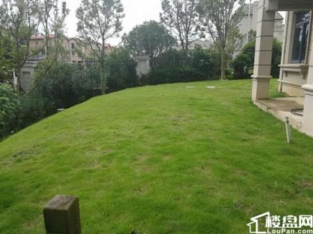 带300私家大花园视野好碧桂园随时看房可使用面积800平
